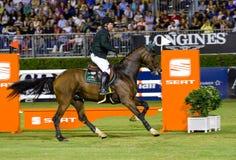 Das Pferd springend - Cian O'Connor Stockbilder