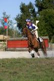 Das Pferd springend in ein Rennen Stockbilder