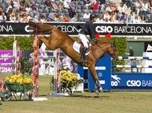 Das Pferd springend - Pedro Veniss Lizenzfreie Stockbilder