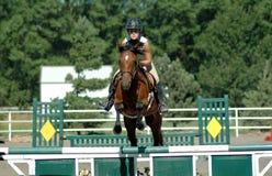 Das Pferden-Springen Stockfoto