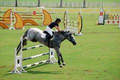 Das Pferden-Springen Stockfotografie