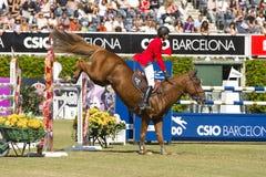 Das Pferdenspringen Stockfotografie
