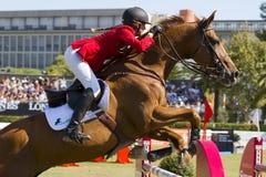 Das Pferdespringen Lizenzfreie Stockbilder