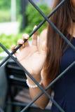Das Pflücken mit der Hand der Käfig Stockfotos