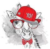 Das Plakat mit dem Bildgiraffenporträt im Hip-Hop-Hut Auch im corel abgehobenen Betrag Lizenzfreie Stockfotos