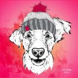 Das Plakat mit dem Bildhundeporträt im Winterhut Auch im corel abgehobenen Betrag Stockfotos