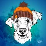 Das Plakat mit dem Bildhundeporträt im Winterhut Auch im corel abgehobenen Betrag Lizenzfreie Stockfotos