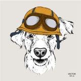 Das Plakat mit dem Porträt des Hundes, der den Motorradsturzhelm trägt Auch im corel abgehobenen Betrag Lizenzfreie Stockbilder