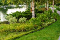 Das plantas e dos arbustos na paisagem projete Fotos de Stock