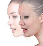 Das Porträt der Frau 20,60 Jahre alt Stockbild
