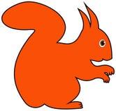 Das Profil eines Eichhörnchens Stockbild