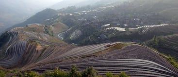 Das Rückgrats-Reis-Terrassen des Drachen Stockbild