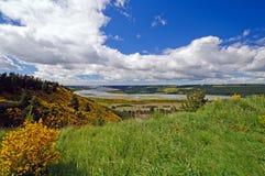 Frühlings-Farben auf einem Glazial- River Valley Stockfoto