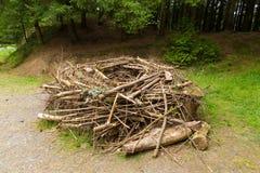Das Replik-Fischadlernest, das errichtet wurde, um die zu modellieren, fand in den Bäumen stockfotografie