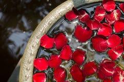 Das rosafarbene Blumenblatt schwimmt auf Wasser Lizenzfreies Stockbild