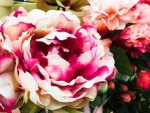 Das rosas cor-de-rosa do vintage imagem floral e brancas fotografia de stock royalty free