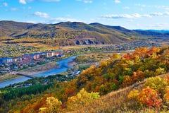 Das Rot verlässt auf der Abhang _autumn Landschaft Lizenzfreies Stockfoto