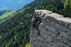 Das ruini des Berges stockfoto
