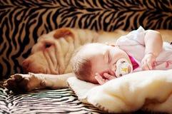 Das Schätzchen mit einem Hund lizenzfreies stockbild