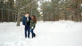 Das schöne glückliche Paar in der Liebe gehend in den Wald, Kerl umarmt Mädchen, die jungen Leute heraus für einen Weg im Winter stock video footage