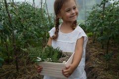 Das schöne kleine Mädchen geht in einen Garten und sammelt Blumen lizenzfreies stockfoto