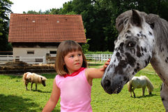 Das schöne Mädchen und das Pferd auf einem Bauernhof Lizenzfreie Stockfotos