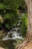 Das schöne und verschiedene Sedona Arizona Lizenzfreie Stockfotografie