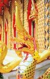Das schöne von Nagas Lizenzfreie Stockfotografie