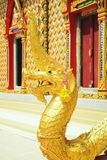 Das schöne von Nagas Lizenzfreies Stockbild