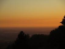 Das Schattenbild von Anlagen gegen schöne Abstufung von Pastellgelbem und Orange von nach Sonnenunterganghimmel, Bergamo Lizenzfreie Stockfotografie