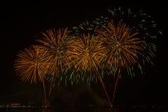 Das Schattenbild von aufpassenden Feuerwerken und von Feiern des Reisenden lizenzfreie stockbilder