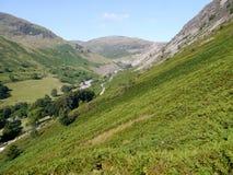 Das Schauen über Adlerfarn bedeckte Tal der Gebirgsseite unten Lizenzfreie Stockfotografie