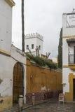 Das Schlendern durch die alten Straßen von Sevilla und heute judera Nachbarschaft nannte Santa Cruz stockfotografie