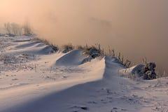 Das schneebedeckte Gras und die Bäume auf dem Flussufer stockbild