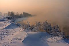 Das schneebedeckte Gras und die Bäume auf dem Flussufer lizenzfreies stockfoto