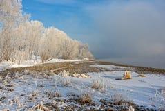 Das schneebedeckte Gras und die Bäume auf der Flussbank stockfoto