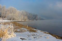 Das schneebedeckte Gras und die Bäume auf der Flussbank lizenzfreies stockbild