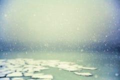 Das Schneefliegen über dem Meer mit Eisschollen lizenzfreies stockfoto