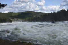 Das schnelle Storforsen im Fluss Piteälven mit dem Hotel Stockbild
