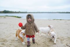 Das schreiende Baby und die Welpen einer Bulldogge spielen im Strand im Herbst Lizenzfreies Stockfoto