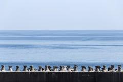 Das Schwarze Meer Lizenzfreie Stockbilder