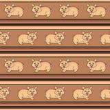 Das Schwein. Beschaffenheit Stockbilder