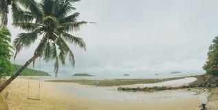 Das Schwingen am Kokosnussbaum lizenzfreie stockfotos