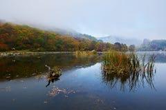 Das Seewasser morgens szenisch lizenzfreies stockfoto