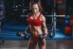 das sexy junge Leichtathletikmädchen, das Bizepsdummköpfe tut, kräuseln Übungen auf Bank in der Turnhalle Lizenzfreie Stockbilder