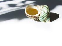 Das Shell Stockbild