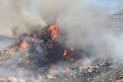 Das silberne Feuer in Beaumont Kalifornien | 2013 | Feuer, das entlang Abhang brennt Stockfotografie