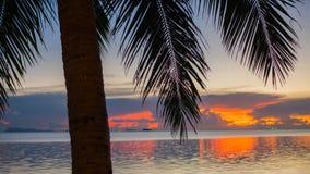 Das Sonne ` s strahlt das Überschreiten durch die Palmenniederlassung aus Tropische Bäume auf der Küste Sonnenuntergangzeit Lizenzfreies Stockbild