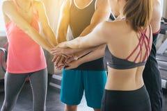 Das sportliche Team, das oder Händen zusammen sich anzuschließen, Handkoordination von den motivierten Gruppenleuten attraktiv un lizenzfreie stockfotografie