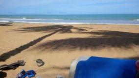 Das Strand-Leben Lizenzfreies Stockbild